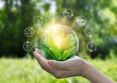 Green IT: quando l'informatica diventa sostenibile
